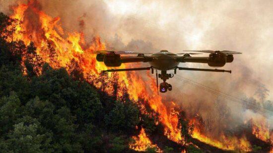 Época mais crítica de incêndios termina com 65.000 hectares ardidos e morte de cinco bombeiros
