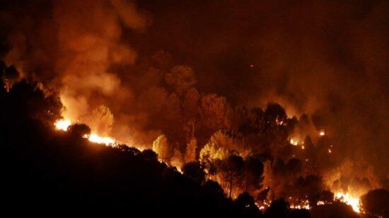 Incêndios: PJ deteve pastor suspeito de atear cinco fogos em Ponte de Lima