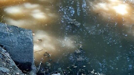 BE questiona Governo sobre poluição de ribeiro em Ponte de Lima