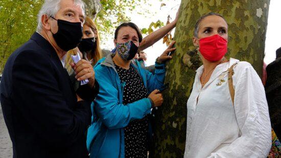 PCP de Viana do Castelo defende reavaliação de projeto que prevê abate de árvores