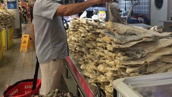 Quota de Portugal na pesca de bacalhau aumenta 168% em 2022
