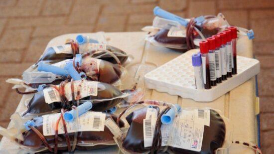 """Reservas de sangue """"ligeiramente abaixo"""" dos níveis habituais"""
